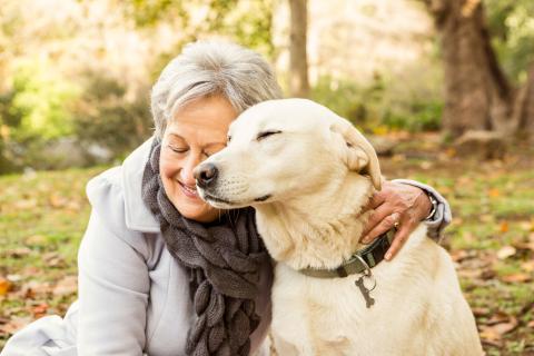 Kuraufenthalt Mit Hund
